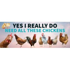 Yes I really do need all these Chickens Sign
