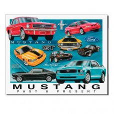 Mustang Past and Present