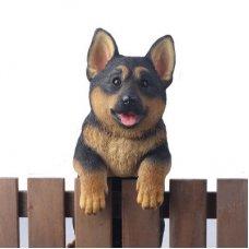 German Shepherd Fence Animal