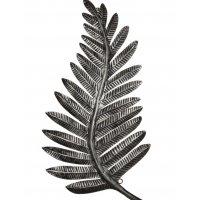 Metal Silver Fern