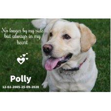 Pet Memorial Plaque/Paver MAKE YOUR OWN